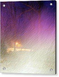 Blizzard Acrylic Print by Pamela Hyde Wilson
