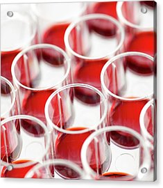 Blood In Multiwell Tray Acrylic Print by Science Photo Library