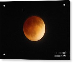 Blood Moon Acrylic Print by Eclectic Captures