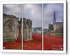 Blood Swept Lands Tryptych Acrylic Print by Chris Thaxter