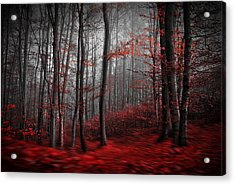 Bloody River Acrylic Print by Samanta