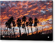 Bloody Sunset Over The Desert Acrylic Print by Jay Milo