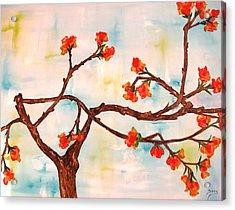 Bloom Acrylic Print by Doris Cohen