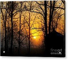 Bloom II Morning Mist Sunrise Acrylic Print