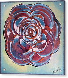 Bloom II Acrylic Print by Shadia Derbyshire
