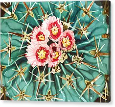 Bloomin' Horse Crippler Cactus Acrylic Print