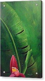 Blooming Banana Acrylic Print