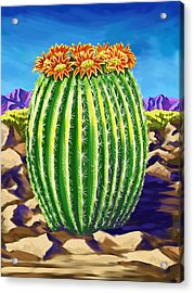 Acrylic Print featuring the painting Blooming Barrel Cactus by Tim Gilliland