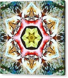 Blooming Fibonacci Acrylic Print