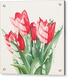 Sunlit Tulips Acrylic Print