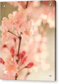 Blooming Season Acrylic Print by Kim Fearheiley