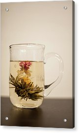 Blooming Tea Acrylic Print by Nazra Zahri