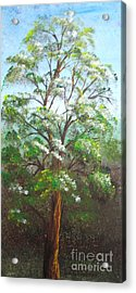 Blooming Tree Acrylic Print by Roni Ruth Palmer