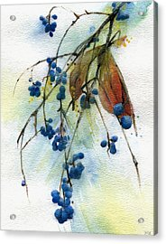 Bloomington Indiana Berries Acrylic Print by John Christopher Bradley