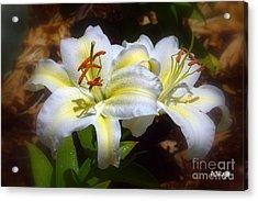 Bloom'n Lilies Acrylic Print