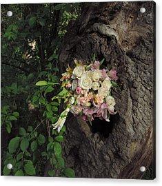 Blossom Rain 25 Acrylic Print by Georg Kickinger