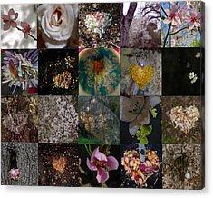 Blossom Rain I Acrylic Print by Georg Kickinger