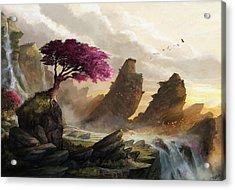 Blossom Sunset Acrylic Print by Steve Goad