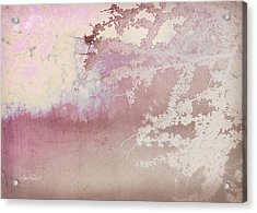 Blossoming Red Bud In Pink  Acrylic Print by Ann Powell