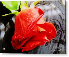 Acrylic Print featuring the photograph Blossoming Red by Robyn King