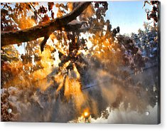 Blowing Snow Acrylic Print by Brent Craft