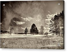 Blowing Snow Canaan Valley Acrylic Print by Dan Friend