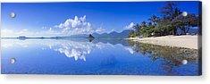 Blue Mokolii Acrylic Print by Sean Davey