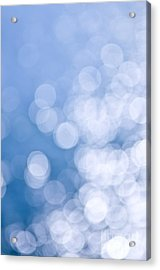 Blue And White  Acrylic Print by Elena Elisseeva