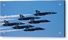Blue Angels Acrylic Print by Adam Romanowicz