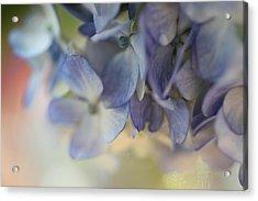 Blue  Acrylic Print by AR Annahita