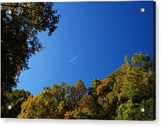 Acrylic Print featuring the photograph Blue Autumn Skies by Kelvin Booker