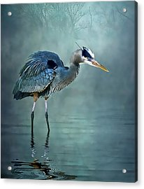 Acrylic Print featuring the photograph Blue Bayou by Brian Tarr