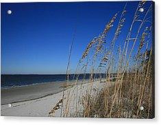 Blue Beach Acrylic Print by Barbara Northrup