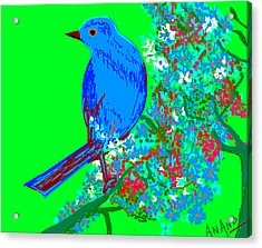 Blue Bird And Flowers Acrylic Print by Anand Swaroop Manchiraju