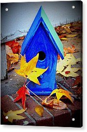 Acrylic Print featuring the photograph Blue Bird House by Rodney Lee Williams