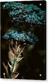 Blue Bouquet Acrylic Print by Bonnie Bruno