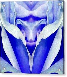 Blue Boy Flower Acrylic Print