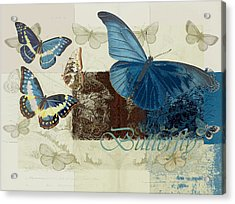 Blue Butterfly - J152164152-01 Acrylic Print by Variance Collections