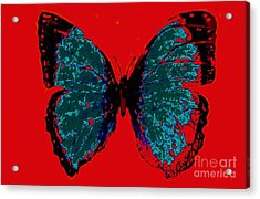 Acrylic Print featuring the digital art Blue Butterfly  by Jasna Gopic