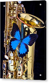 Blue Butterfly On Sax Acrylic Print by Garry Gay