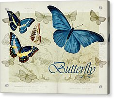 Blue Butterfly - S01a Acrylic Print by Variance Collections