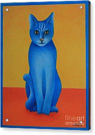 Blue Cat Acrylic Print by Pamela Clements