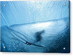 Blue Cocoon Acrylic Print by Sean Davey