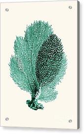 Blue Coral Acrylic Print by Patruschka Hetterschij