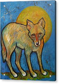 Blue Coyote And The Full Moon Acrylic Print