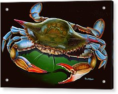 Blue Crab Open Claw Acrylic Print