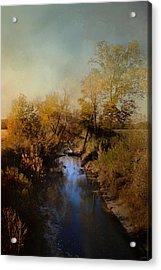 Blue Creek In Autumn Acrylic Print by Jai Johnson