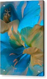 Blue Danube Acrylic Print by Bobby Villapando