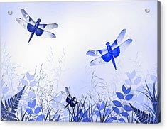 Blue Dragonfly Art Acrylic Print by Christina Rollo