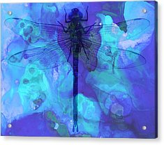 Blue Dragonfly By Sharon Cummings Acrylic Print by Sharon Cummings